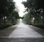 059-Pechino