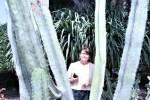 009-la-terrazza-delle-piante-grasse-media