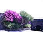 013-la-fortificazione-di-aci-castello-media